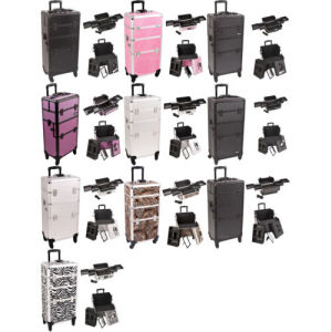 Organizer Trolley Aluminum Rolling Makeup Cosmetic Case (HX-A0733) pictures & photos