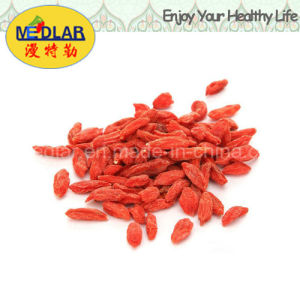 Medlar Lbp Ningxia Goji Chinese Wolfberry