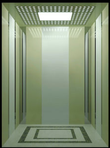 800kg 10 Person Elevator From Elevator Manufacturer with Machine Room pictures & photos