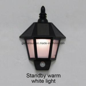 Plastic Housing Solar Wall Night Lamp with PIR Sensor