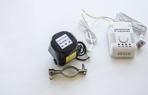 En Standard Independent Home Gas Detector for Kitchen Security pictures & photos
