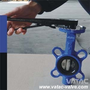 JIS Std Cast Iron Wafer Type Marine Butterfly Valve pictures & photos