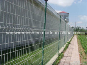 Wire Mesh Fence Galvanized/PVC Coated Made in China Is on Hot Sale pictures & photos