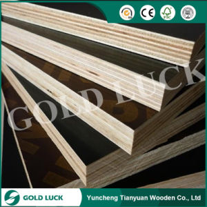 High Quality Construction Marine Plywood pictures & photos