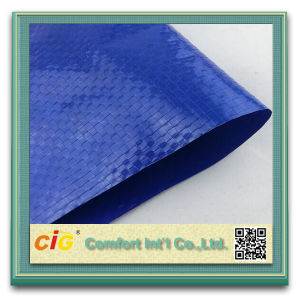PE Tarpaulin/PVC Tarpaulin/PVC Clear Mesh Tarpaulin pictures & photos
