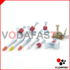 Shooting Nail Common Nail Iron Nail Roofing Nail Coil Nail pictures & photos