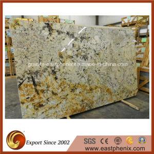 Popular Delicatus Gold Granite Big Slab pictures & photos