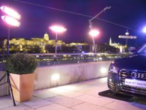 Direct and Instant Electric Heaters for Outdoor Auto Show pictures & photos