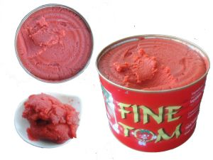 Healthy Puree Canned 70g Tomato Paste pictures & photos