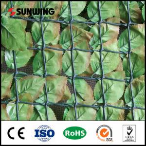 Outdoor Garden Decoration Plastic Artificial PVC Privacy Fencing pictures & photos