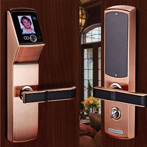 2016 Hot Sell 3 Inch Capacitive Touch Screen Facial Identification Door Lock pictures & photos