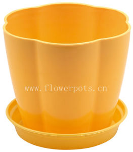 Color Plastic Flower Pot (KD661-KD663) pictures & photos