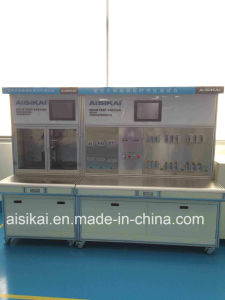 125A 2p Miniature Circuit Breaker with CCC/CE/ISO9001 pictures & photos