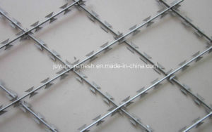 Spiral Razor Barbed Wire for Fencing Security pictures & photos