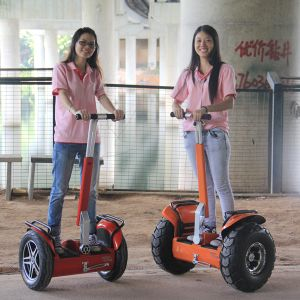 Cheap Electric Scooter Wind Rover Electric Chariot Electric Skateboard pictures & photos