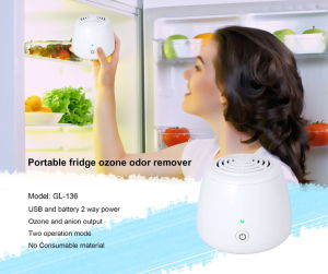 Gift Set Mini Air Purifier 136 Ozone Air Cleaning Gl-136 pictures & photos