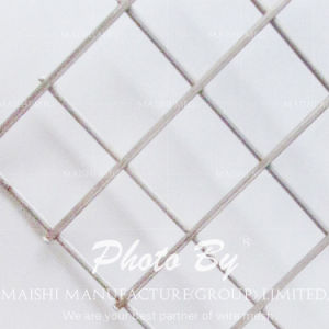 Concrete Reinforced Steel Bar Welded Wire Mesh pictures & photos