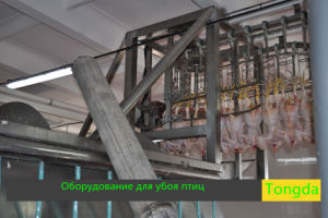 Turkey Slaughter Equipment pictures & photos