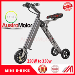 Electric Mini Scooter