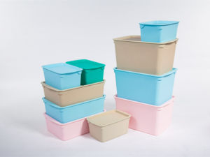 Rodman Living Room Use One Set Plastic Storage Box for Clothing Toy Shoes in Blue pictures & photos