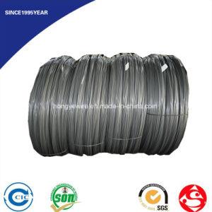 DIN 17223 En 10270 JIS G3521 4mm Steel Wire pictures & photos