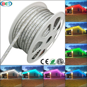 110V/120V/220V/240V/277V Colorful 5050 RGB LED Strip Light with Controller pictures & photos