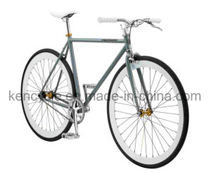 Hi-Tensile Steel Single Speed Fix Gear Bike Sy-Fx70004 pictures & photos