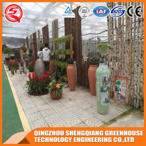 Flower/ Vegetable/ Garden Toughened Glass Greenhouse pictures & photos