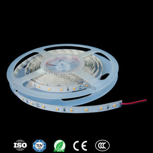 Dandrail Lighting, Foot Light for Stairs, and Under Bench Lighting with Hot Selling SMD2835 14.4W 60LEDs/M LED Strips pictures & photos