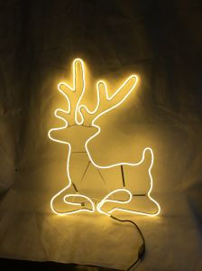 Christmas Decoration Neon Light with Different Shape pictures & photos