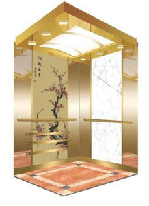 Safe and Stable Passenger Elevator with Japan Technology pictures & photos