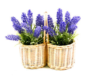 Artificial Flower Purple Lavender for Home and Wedding Decoration with Rattan Basket pictures & photos