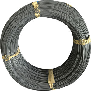 Medium Carbon Steel Wire SAE1035 for Hot Sale pictures & photos