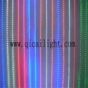 Digital LED Strip Wholesale with Top Quality Best Price Flexibe 2835 LED Strip pictures & photos
