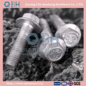 Flange Bolts (ASME B18.2.4.9m) pictures & photos
