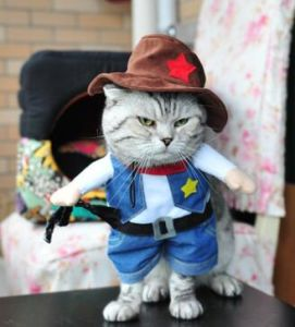 Cowboy Design Cat and Dog Pet Costume Clothing pictures & photos