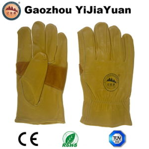 Reinforcement Palm Cow Grain Leather Safety Drivers Work Gloves pictures & photos