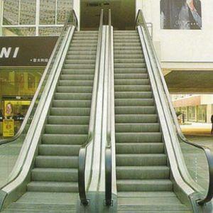 Indoor Commercial Escalator pictures & photos