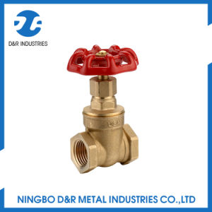 1/2 Inch Brass Stem Gate Valve with Handwheel pictures & photos