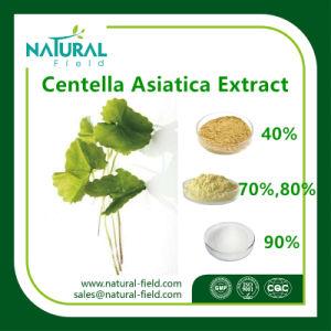 Centella Asiatica Extract 10%-95% Asiaticoside Powder / Asiaticosides Plant Extract pictures & photos