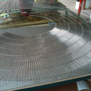 Stainless Steel304/316 Conveyor Belt/ pictures & photos