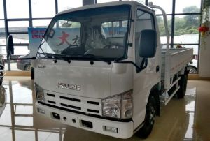 Isuzu 100p Single Row Light Cargo Truck pictures & photos