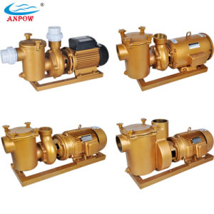 Electric 7.5HP Swimming Pool Copper Water Pump pictures & photos