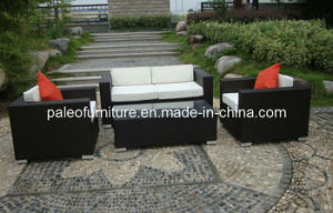 Patio Furniture Outdoor Wicker Rattan Garden Sofa (PAS-044.2)