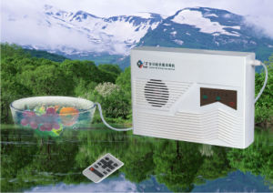 Home Ozone Purifier with Anion (2186) pictures & photos