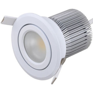 COB LED 10W Down Light CE RoHS (BW-A71015)