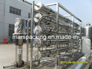 Well Water Treatment System (FST-3000) pictures & photos