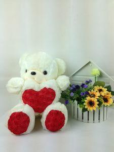 Plush Valentine Teddy Bear Toy, Fashion Stuffed Toy for Kids (WJ012)