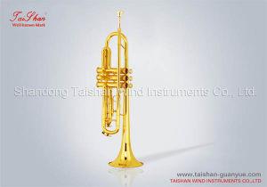 Trumpet (TSTR-801)