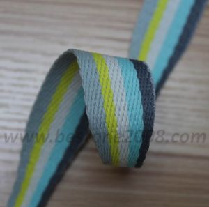 Jacquard Variable Webbing#1401-111 pictures & photos